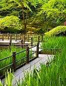 Walkway in Japanese Garden