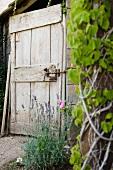 Wood Door and Garden