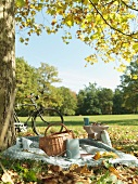 Picnic and bicycle in a field in Autumn