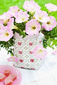 Flowering plant in patterned plant pot and dish of sweets on white tablecloth