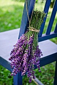 Bunch of lavender hanging on garden chair