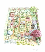 Garden plan with diverse mixture of ornamental plants and trees