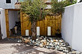 Wooden shed on the terrace of a home behind a stone garden bed mstone with an olive tree