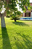 Well-tended gardens of a Mallorcan Finca with pool and mature trees