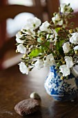 Delicate posy of white roses in blue and white china vase and two pebbles on dark wooden table