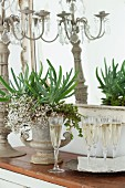 Champagne flutes, flower arrangement in amphora and candelabra