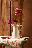 Magnolia flowers in a pitcher