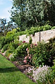 Blooming perennials in front of natural stone wall in a spacious garden