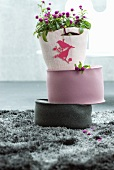 Plant with purple flowers in felt planter and two felt cushions on grey, long-pile rug