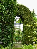 Zugeschnittene Thujahecke um eine schmiedeeiserne Rundbogengartentür mit Blick auf den Vorgarten und die Garage