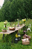 Table in meadow set for Norwegian summer festival