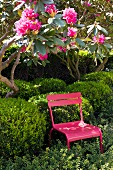 Pink garden chair between bushes and a flowering tree