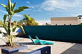 Contemporary sun loungers in a hotel courtyard with swimming pool