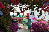 View of courtyard bar and breakfast area with parasols seen through bougainvillea