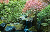 Small waterfall in the pond of the Japanese Tea Garden in Portland