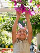 Girl reaching for hanging basket