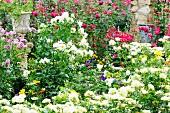 Üppig blühender Garten und antik griechisches Pflanzengefäss auf Säule