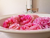 Pink roses lying in earthenware dish as decoration