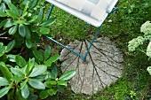 Gartenplatte in Form eines Rhabarberblattes
