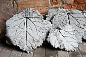Betonplatten von Rhabarberblättern