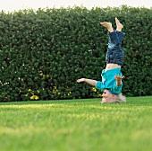 Little boy doing a headstand on garden lawn