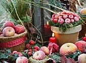 An arrangement featuring ornamental apples and apples covered in frost