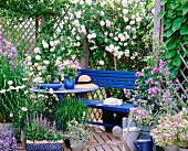Blue bench and table, flowering climbing rose and lilies in garden pavilion