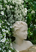 Bust of a woman and sweet alyssum (Lobularia maritima)