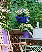 Summer balcony with flowering plants in blue wicker shopping basket hanging from chain