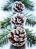 Weihnachtsdeko mit Tannenzweigen und Zapfen
