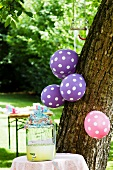Lemonade and balloons in garden