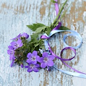 Posy in shades of blue and purple