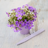 Purple spring flowers in matching vase