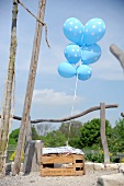 Blue balloons with white polka dots ties to wooden crate