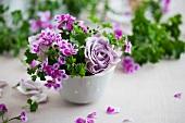Gesteck aus Pelargonien und lila Rosen