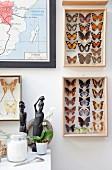 Sammlung von Schmetterlingen an der Wand, im Vordergrund Tisch mit afrikanischen Skulpturen