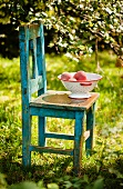 Colander of Peaches on an Old Wooden Chair; Outside