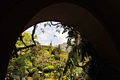 View of glorious, Mediterranean landscaped garden through archway