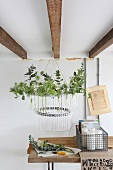 Home-made chandelier made from a bicycle tyre and glass tubes filled with fresh garden herbs and twigs