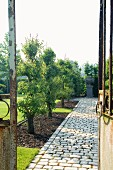 Paved garden path flanked by well-tended beds of fruit trees; rusty iron garden gate in foreground