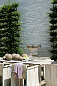 Espalier evergreen plants on white brick wall behind rustic wooden table, chairs and stone urn