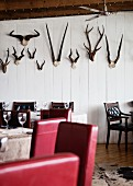 Tables, chairs with red upholstery and wooden chairs in front of animal horns on white wooden wall in restaurant