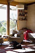 Light filled room - dog on the carpet in front of a cozy armchair and patio door in an eco-friendly house