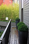 Boxwood in tall, gray planters on a narrow balcony in front of the gray wooden facade of a hotel