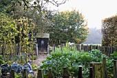 Gemüsegarten im Herbst