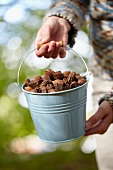 Woman holding bucket of beechnuts