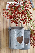 Rosehips and zinc candle lanterns hanging on wooden wall