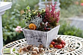 Autumnal arrangement on garden table