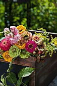 Zinnias and blackberries in colourful bouquet of garden flowers