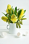 Yellow hyacinths in enamel jug